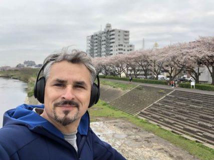 桜が綺麗な~~